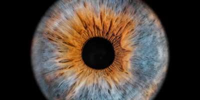 Photos de votre iris en très gros plan