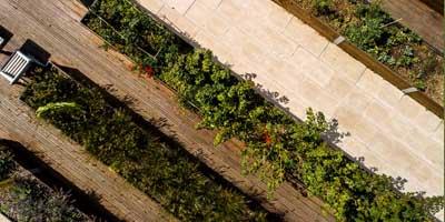 Photo aérienne des jardins partagés du Havre